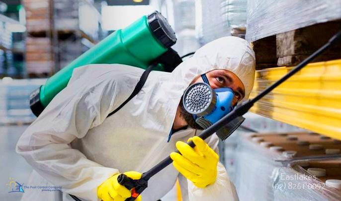 Pest Control Services Eastlakes